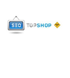 SEO-TopShop.ru